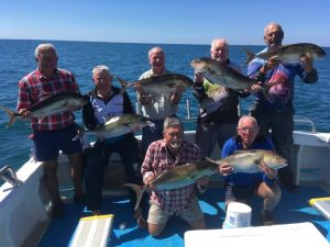 Plenty of Samson Fish for the Bribie Boy's