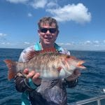 Snapper caught by a Man in Autumn 2019