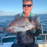 Snapper caught by Man in Autumn 2019
