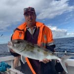 In Autumn 2019 Man Caught a Large George Whiting Fish