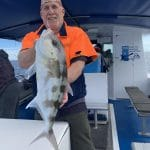 Old Man Showing a King George Whiting Fish on Fishing Charter