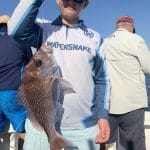 In Autumn 2019 Man caught a Snapper Fish