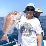 In Autumn 2019 Old Man showing Freshly Caught Snapper