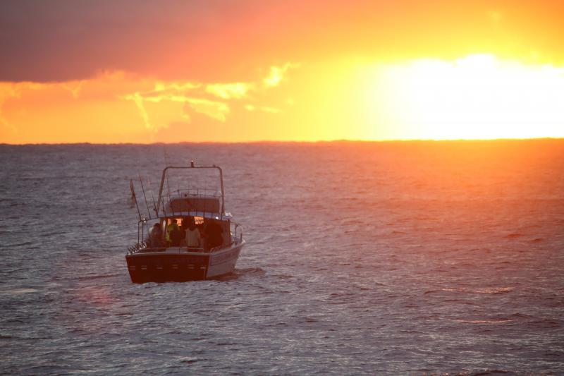 Evans Head Deep Sea Fishing in Spring 2019